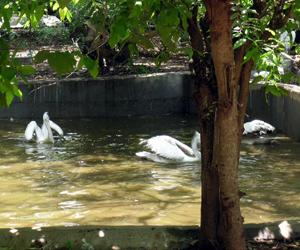 Chennai Parks